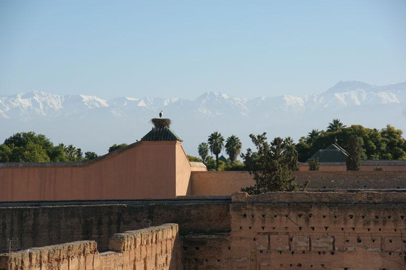 Activités à marrakech avec le Riad Azenzer, riad de charme
