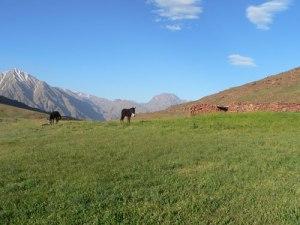 Mini trek dans la vallée du Zat et le plateau du Yaggour